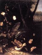 SCHRIECK, Otto Marseus van Still-life with Plants and Reptiles ery oil painting