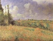 Camille Pissarro Rye Fields at Pontoise oil painting reproduction