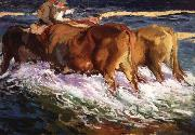 Joaquin Sorolla Y Bastida Oxen Study for the Afternoon Sun oil painting reproduction