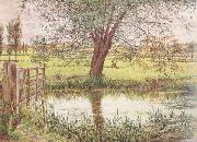 William Bell Scott Landscape with a Gate and Watermeadow (mk46) oil painting