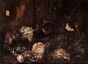 Otto Marseus van Schrieck Still life with Insects and Amphibians oil painting