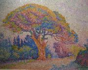 Paul Signac By Paul Signac oil painting reproduction