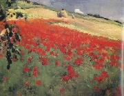 William blair bruce Landscape with Poppies (nn02) oil painting