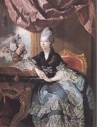 Johann Zoffany Queen Charlotte (mk25) oil painting
